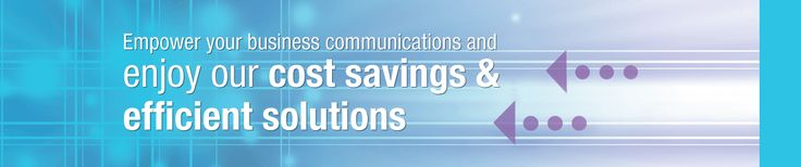 Long Distance, DIDs, Hosted PBX, Local calls, ISDN PRI, Business Phone Line