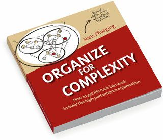 Complexitools: A book on organizational leadership - Complexitools - the book