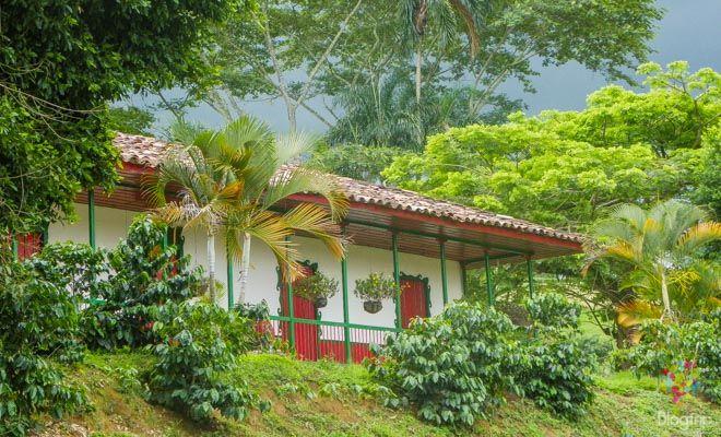 Relato y consejos para viajar al eje cafetero. Visitar la región del mejor café del mundo en Colombia, sus paisajes, fincas, hoteles y parques temáticos