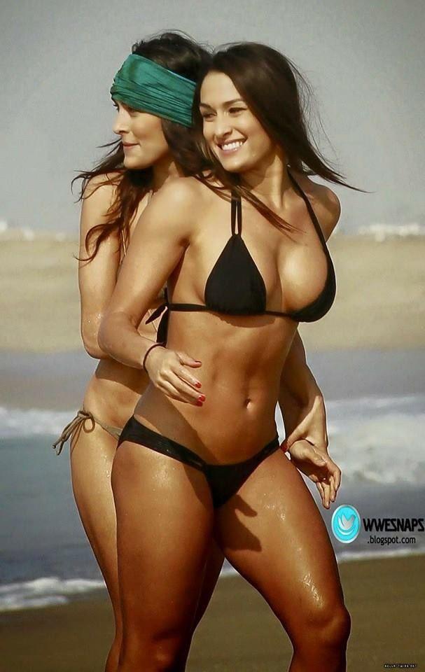 Image result for Nikki Bella nude BLOGSPOT.COM