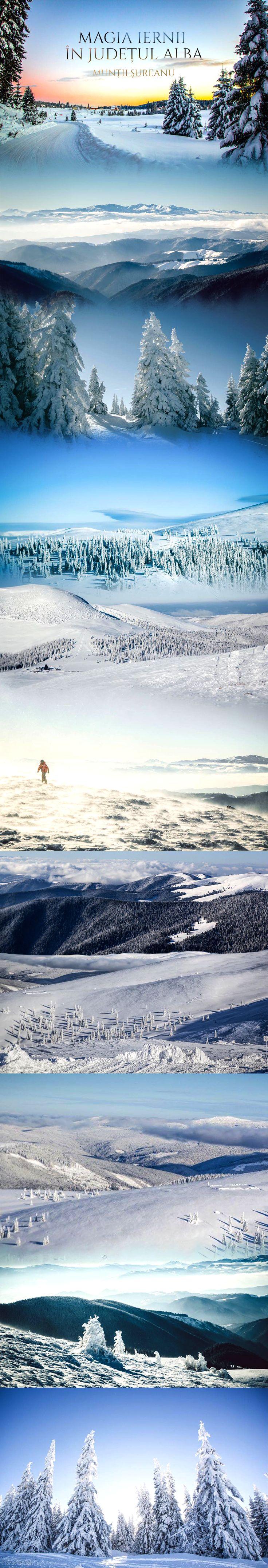Imagini surprinse în munții Șureanu în Apropierea Domeniului Schiabil Șureanu, unul dintre cele mai noi domenii de ski din România, inaugurat în anul 2009. #RomaniaFrumoasa #Romania #AlbaFrumoasa #Tourism #landscape #photography #winter Foto: Ionut Vaidean