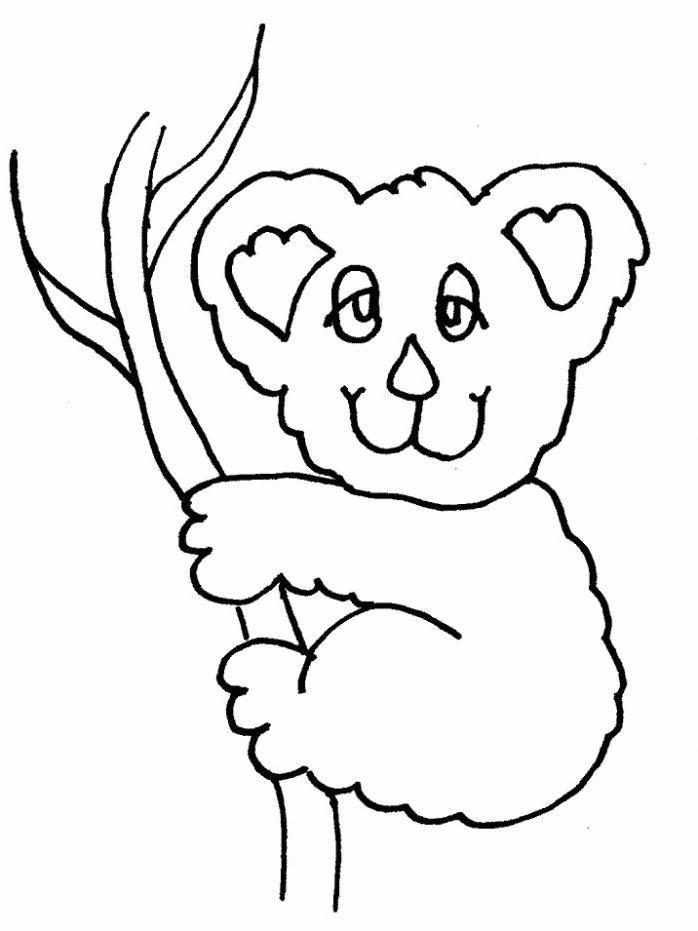 Dibujos De Koalas Para Colorear Colorear Dibujos