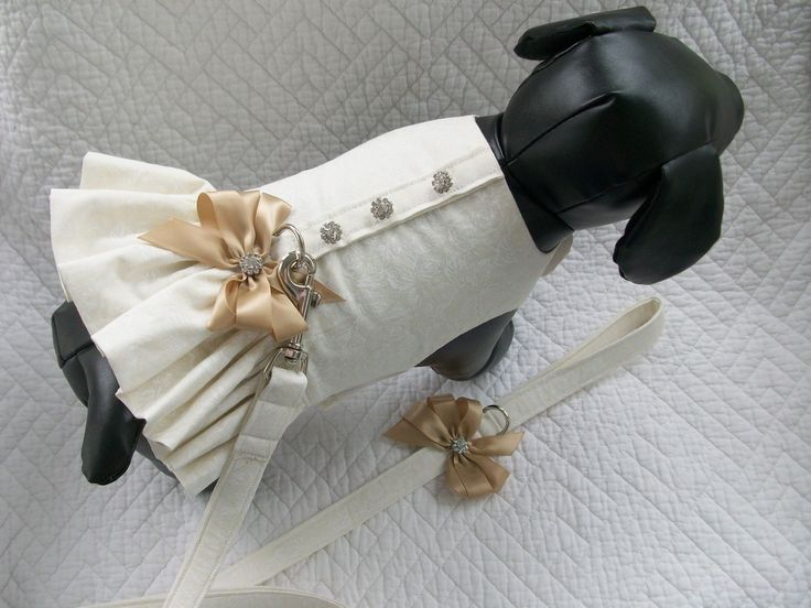 Wedding  Ruffled  Harness with matching leash for Dog or Cat Outfit. $36.95, via Etsy.