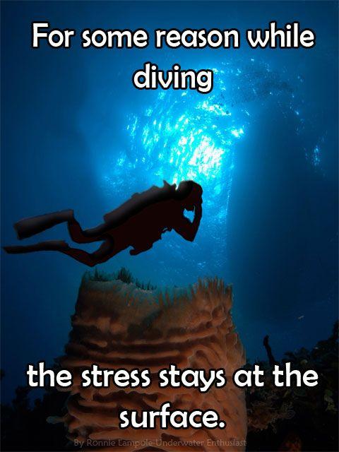 Scuba_Diving_Quotes-2.jpg 480×640 pixels