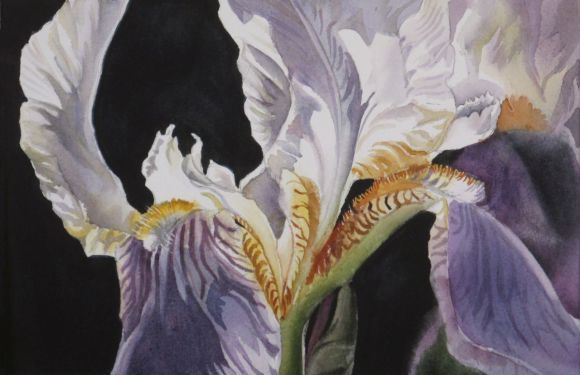 """A painting a day #3 """"Iris with black"""""""