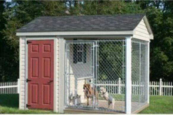 Now thats a doggy house! Nice for the winter!