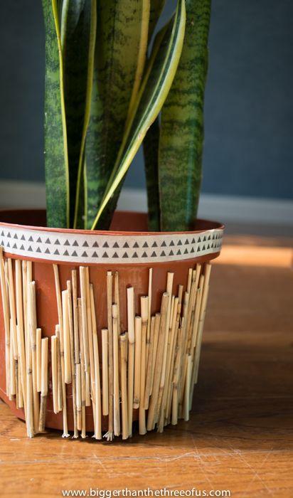 Best 25 Cheap Plant Pots Ideas On Pinterest Plastic
