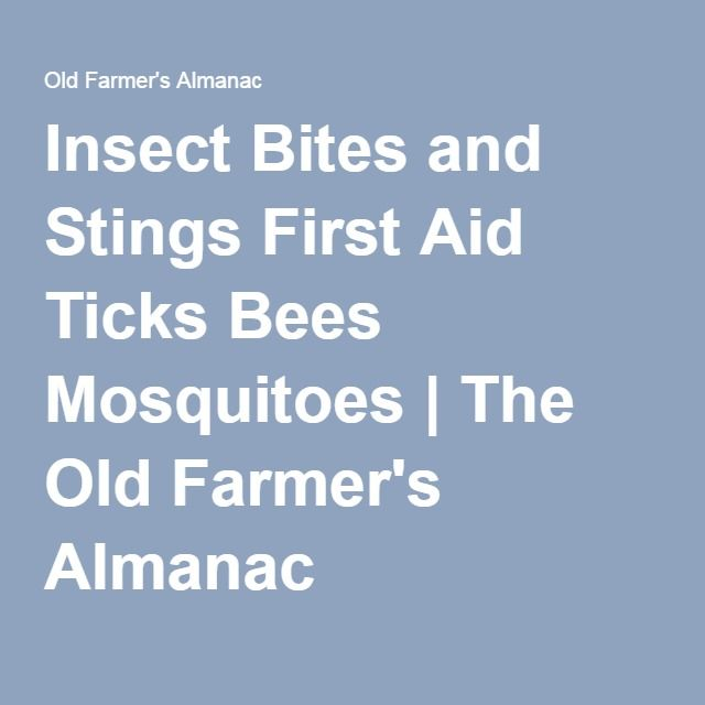 Insect Bites and Stings First Aid Ticks Bees Mosquitoes | The Old Farmer's Almanac