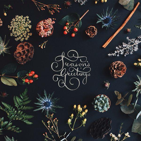 Christmas cards 2014 on Behance