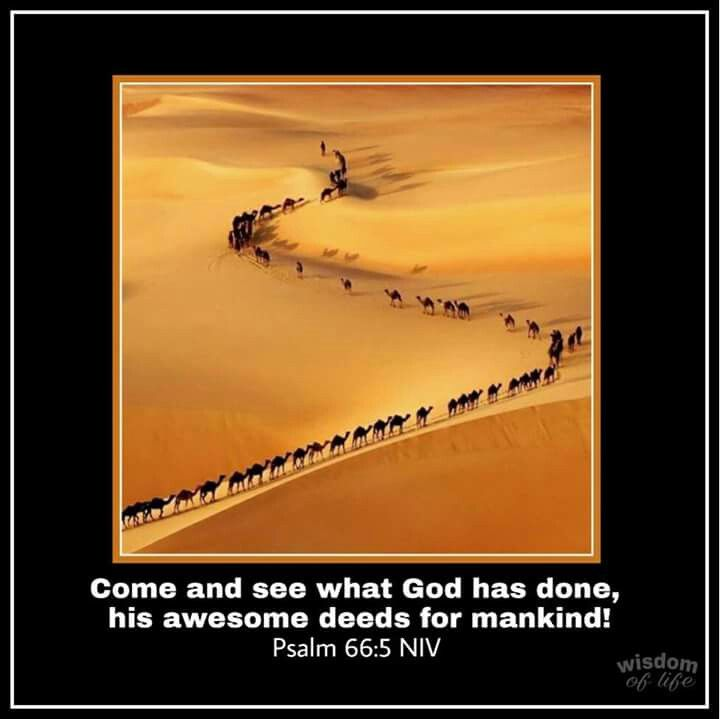 Psalm 66:5 NIV Come and see what God has done,  his awesome deeds for mankind!