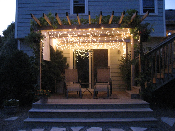 Pergola with grape vines and icicle lights.