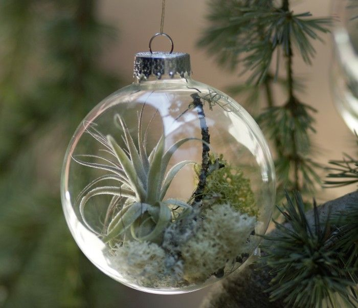 Forest Floor Ornament from Flora Grubb - how beautiful!