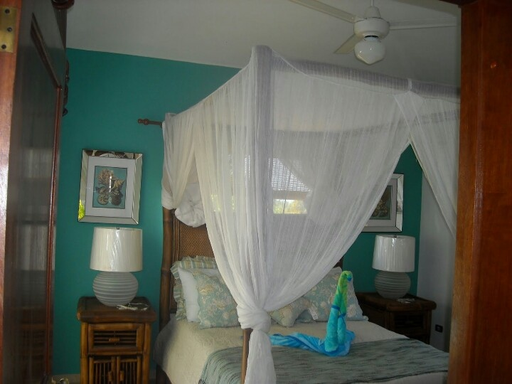 Master with mosquito nets