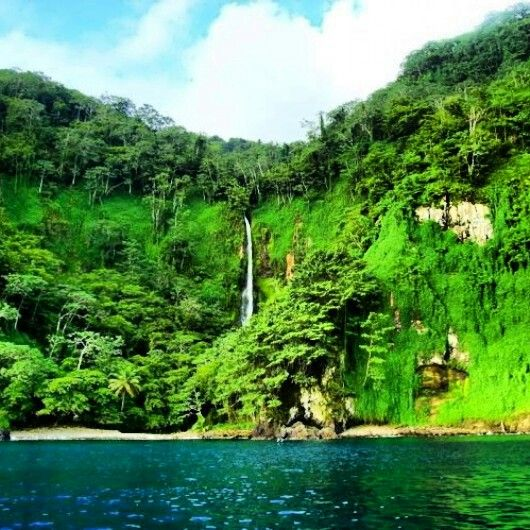Cocos Island: 962 Best Costa Rica C A Images On Pinterest
