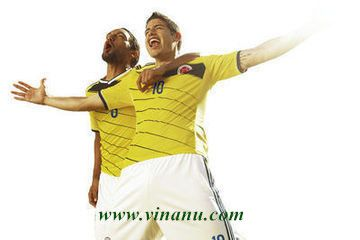 2014 World Cup, Colombia