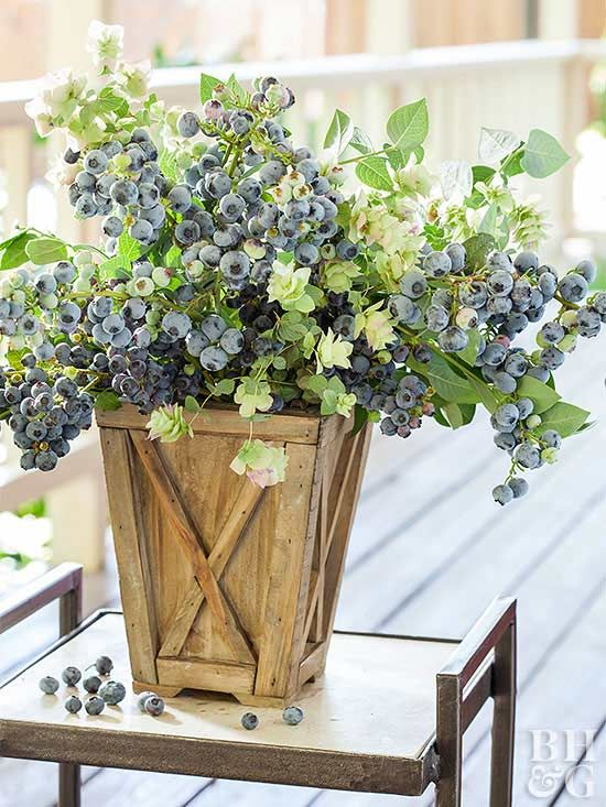 Growing berries in containers is simpler than you think! All you need is a trusty pot, a spot in full sun, and plenty of water. Enjoy fresh fruit all season long with our tips on how to grow blueberries, raspberries, and strawberries in containers. #gardening #gardentips #growfruit