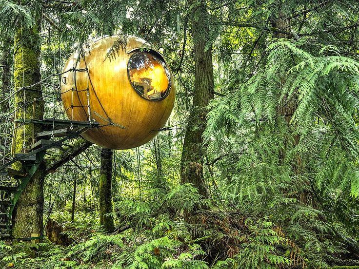 Дом на дереве в Британской Колумбии, Канада. Free Spirit Spheres. Отель на дереве. /наш Ванкувер