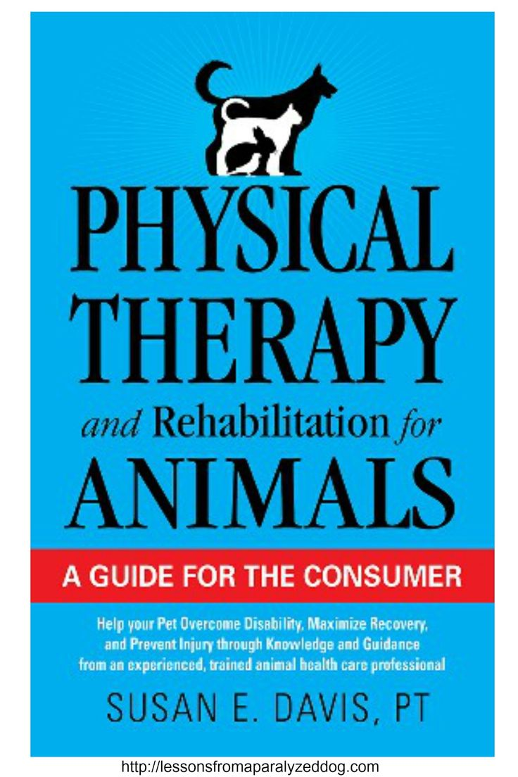 Books on physical therapy - Physical Therapy And Rehabilitation For Animals By Susan E Davis Pt Exercises Pet Owners