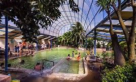 Image result for tropical indoor swimming pools in Colorado that supports snow