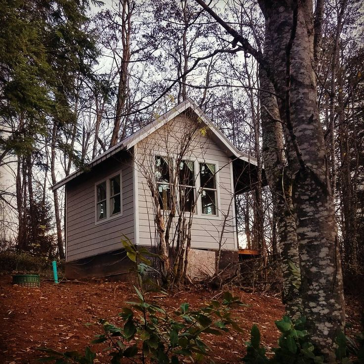 Best 25 small septic tank ideas on pinterest off grid for Cottage septic systems