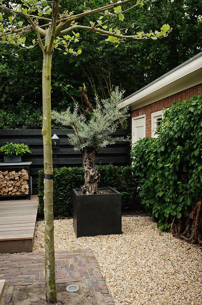 25+ beste ideeën over Hedendaagse tuinen op Pinterest ...