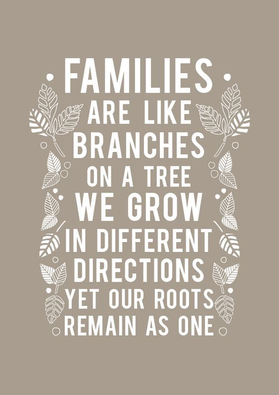"""Great Idea for Family Reunion Photo Book Quotes. """"Families are like branches on a tree. We Grow in different directions yet our roots remain as one."""":"""