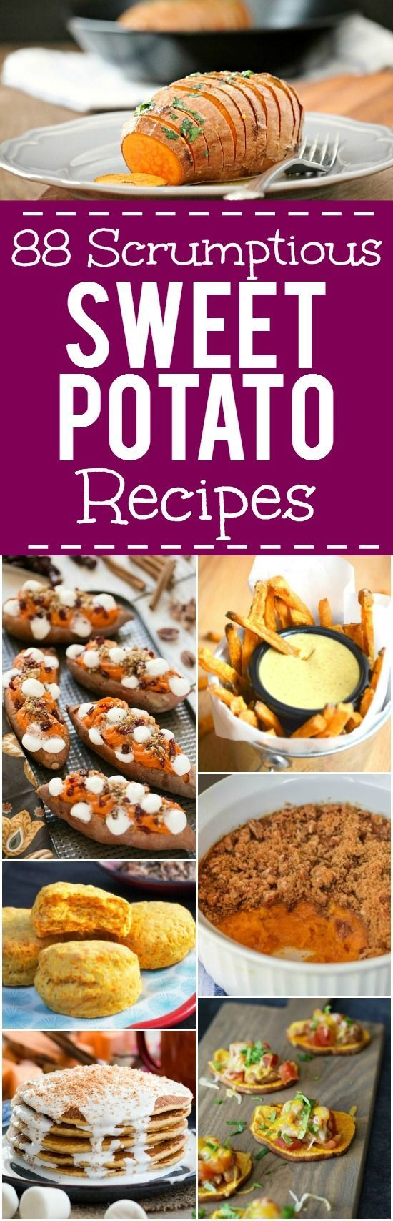 Sweet Potato Recipes - Side Dishes, dinners, breakfast, and dessert.88 of the BEST Sweet Potato Recipes for warm, cozy dinners, unique breakfasts and desserts, and delicious and festive Thanksgiving side dishes.