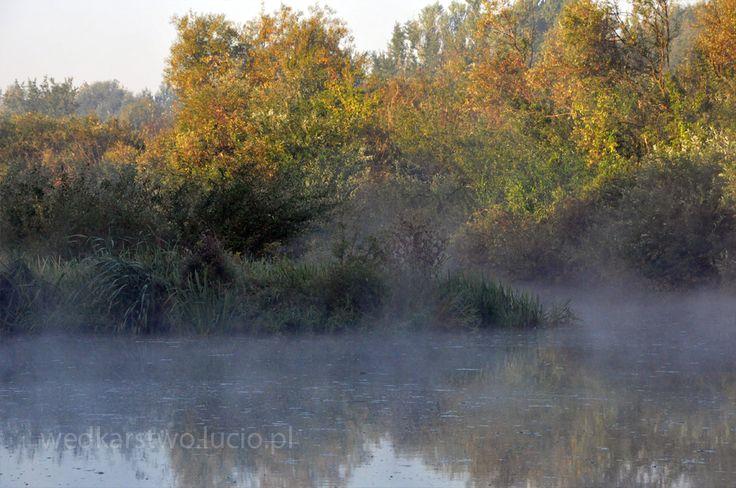 #Wędkarstwo nad #rzeka #Wisłok w #Rzeszów #Polska. #Fishing in #Poland #Wislok #river. #Feeder #rods and beautiful #landscape #scenery