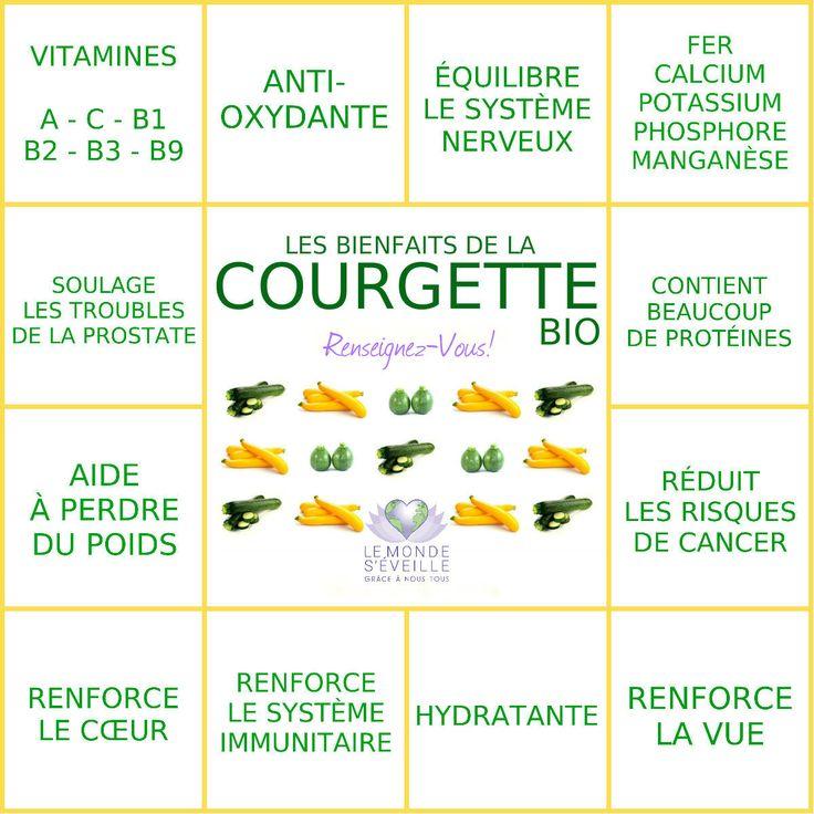 Les Bienfaits de la Courgette | LA COURGETTE Le Monde s'Eveille Grâce à Nous Tous ♥