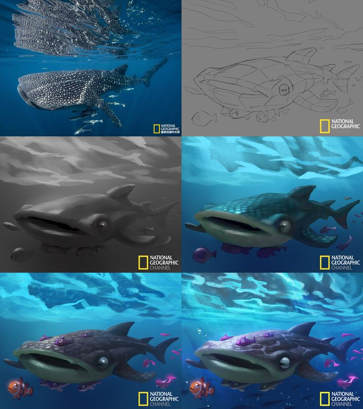 ArtStation - Cartoon National Geographic 08, Crazy JN