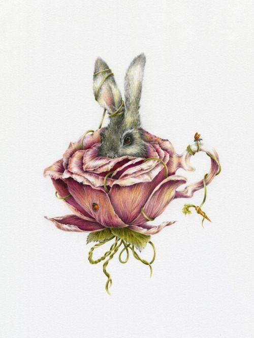 via tumblrRabbit, Tattoo Ideas, Courtney Brim, Bunnies Art, Rose Tea, Alice In Wonderland, Pink Rose, Vintage Rose, Teacups