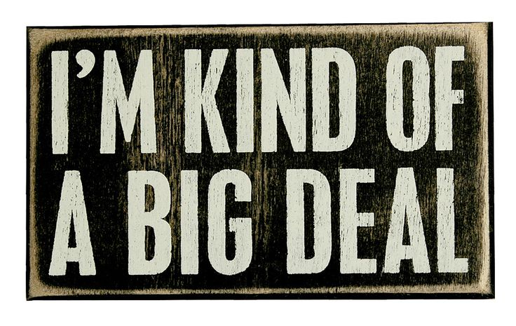 Big Deal  Box Sign    Funny Home Decor, Funny Office Gift, Cute Wall Wooden Box Sign   Catching Fireflies