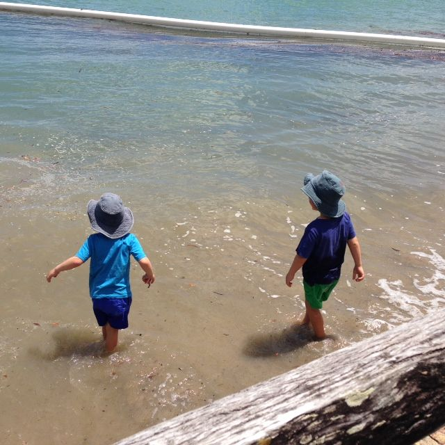 Cannonvale near Airlie Beach North Queensland