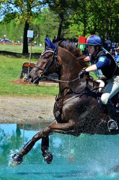 Horse running, jumping, sailing past that beautiful blue water!
