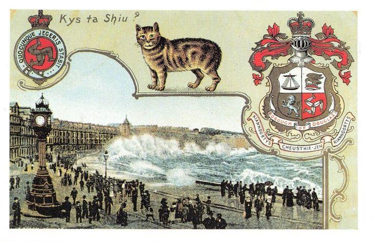 ICYMI: Nostalgia Postcard c1910 Douglas Isle of Man, Manx Cat, Reproduction Card…