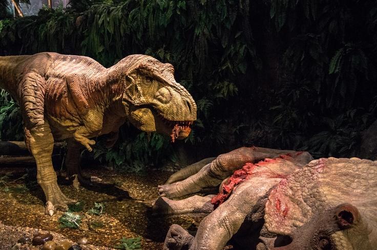 Gondwana Praehistorium, Landsweiler-Reden im Saarland. Dinosaurier Ausstellung und Erlebnisszenter. #saar #saarland