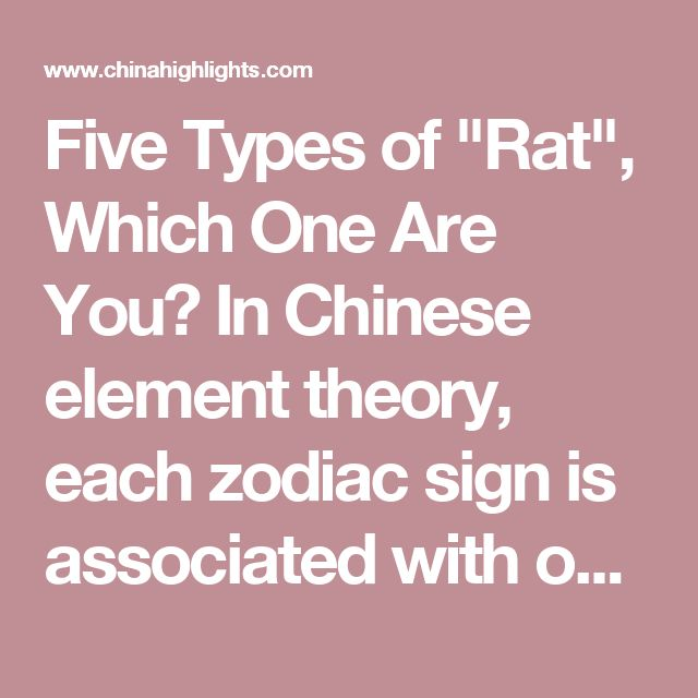 """Five Types of """"Rat"""", Which One Are You? In Chinese element theory, each zodiac sign is associated with one of the five elements: Wood, Fire, Earth, Gold (Metal), and Water. For example, a Wood Rat comes once in a 60-year cycle.  It is theorized that a person's characteristics are decided by their birth year's zodiac animal sign and element. So there are five types of Rat, each with different characteristics:  Type of RatYear of BirthCharacteristics Wood Rat1924, 1984Independent…"""