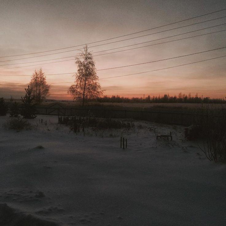 Новый год первого сентября - когда ты отдохнул, полон сил и новых идей, и урожай в закромах, и яркие краски повсюду, да ещё и нарядные дети с цветами - вот всегда его чувствую. Или весна -  сумасшедшая энергия, ломающая глыбы льда, всё кругом просыпается и тянется к свету - да, тоже чувствую это обновление. Но 31 декабря? Это почему? не понимаю. Наверное всё лишь для того, чтобы не дать людям погрузиться вместе с природой в тишину, тем более, что в тишине далеко не всем хорошо. А мне было бы…