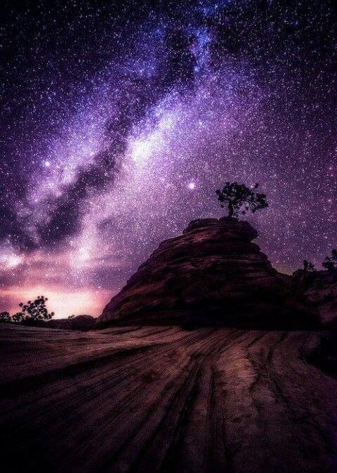 Desert night sky | Starry Skies ☆ | Pinterest