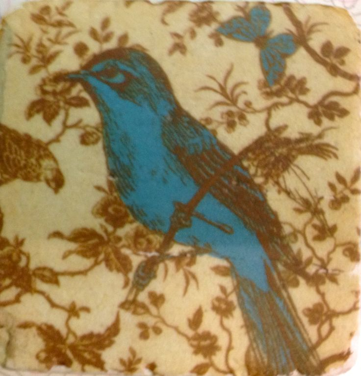 Sweet blue bird and butterfly tile style coaster....