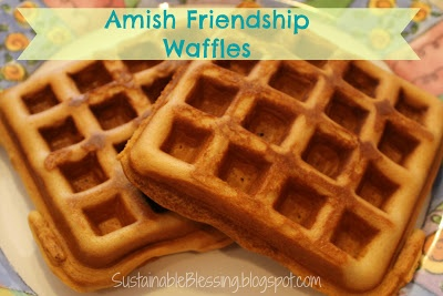 Amish Friendship Waffle Recipe. Freezes great for those hectic mornings.