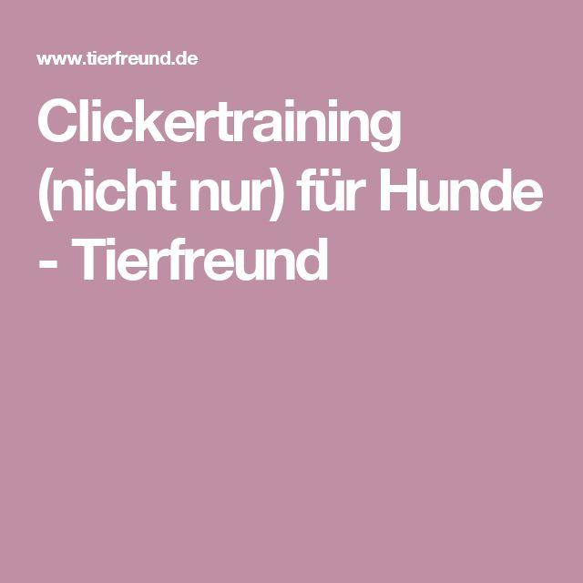 Clickertraining (nicht nur) für Hunde - Tierfreund