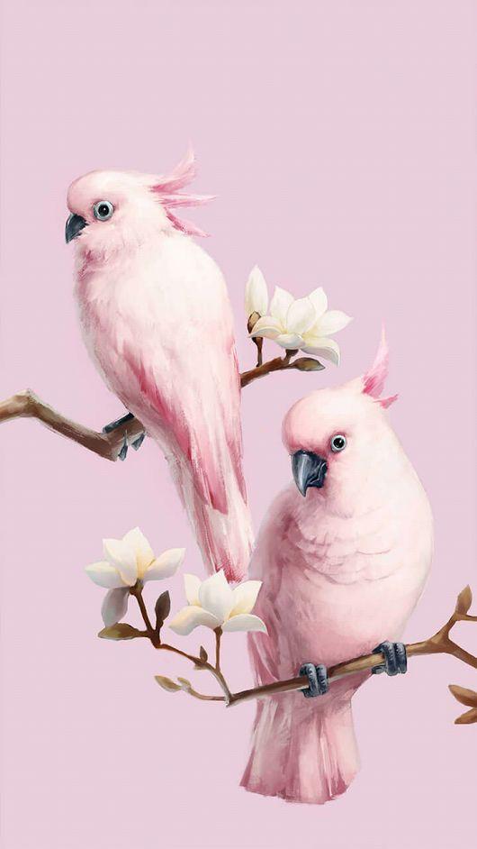 Фотография | Розовая птица, Обои с птицами и Картины животных