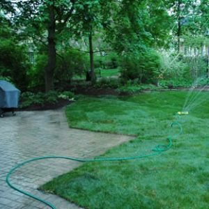 Lawn Care basics to prepare your Yard for Spring