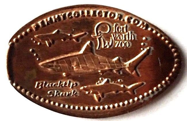 Elongated Penny Coin - SHARKS - FORT WORTH ZOO -TX
