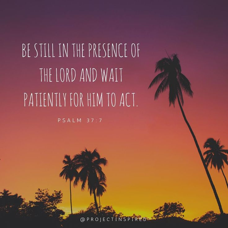 Be still in the presence of the Lord and wait patiently for Him to act. - Psalm 37:7