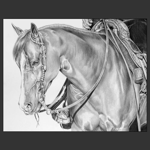Love this one: Horses Ii, Hors Head, Horses Head, Horses Pencil, Nice Hors, Hors Ii, Pencil Art, Hors Pencil, Beauty Horses