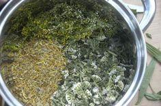 Mast na křečové žíly Recept, který jsme postupem času zdokonalily a odzkoušely. Prozatím se nám jeví jako nejúčinnější. Vyzkoušejte a uvidíte. Kůru je třeba doplnit o vnitřní užívání bylinkového čaje (receptík naleznete v záložce bylinkové čaje). Vhrnci rozehřát 500g vepřového sádla /nejlépe vnitřního, nesoleného/, někdo používá kokosový tuk, bambucké máslo aj. Mezitím pokrájet na menší…