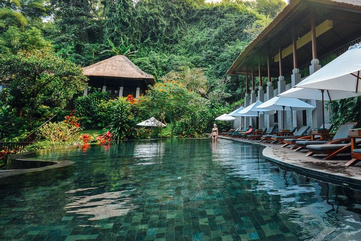 5 of my favorite Ubud accommodations, from luxurious resorts to budget stays.