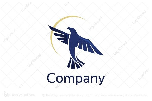 This logo is great for security company, consulting company, real estate company, constructions company, financial company, industrial companies, import and export company, hunting store, sportswear brand, technology company, web host provider, sports wea